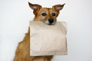 doggie bag?