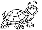 turtle step